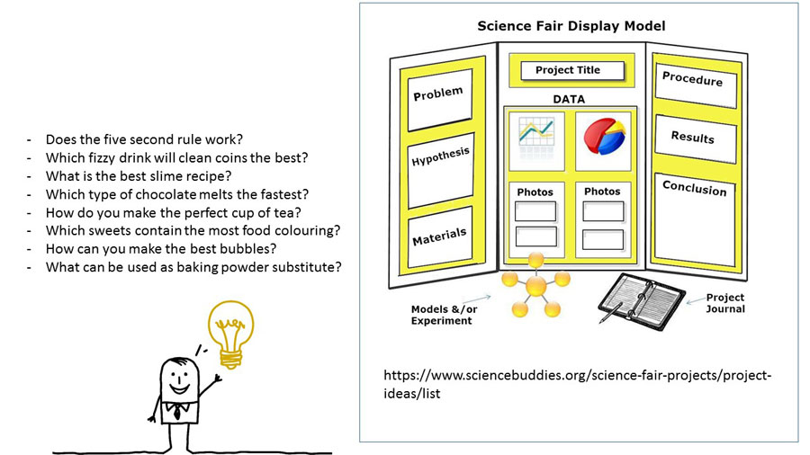 Science Fair House Competition 2 website